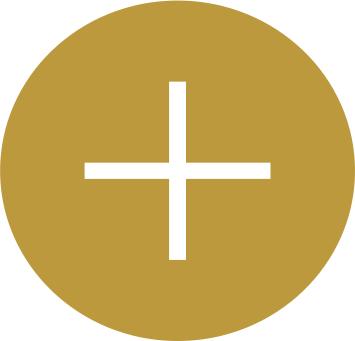 NOC Gold